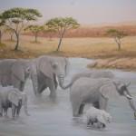 animaux_elephant