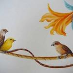 oiseau_7